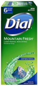 best antibacterial soaps - dial bar soap
